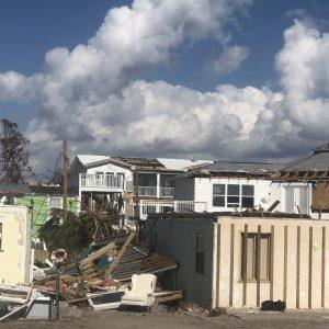 Neighborhood Destruction IMG_6851