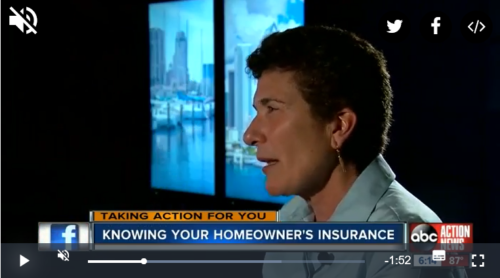 "Lisa Miller on Tampa Bay's ABC Action News ""Whats in your insurance policy?"" segment"