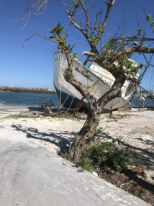 Hurricane Dorian's 180 mph winds and storm surged tossed this large boat ashore on Green Turtle Cay, Bahamas