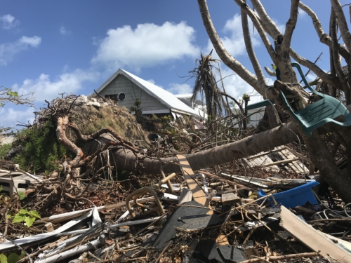Uprooted trees and damaged homes on Green Turtle Cay, Bahamas following Hurricane Dorian