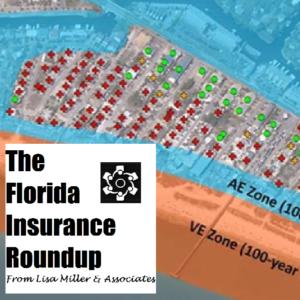 Flood Insurance Resilience Lisa Miller Associates
